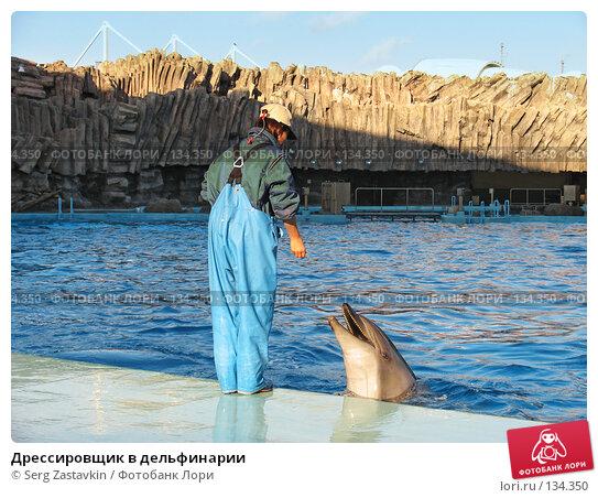 Дрессировщик в дельфинарии, фото № 134350, снято 4 апреля 2007 г. (c) Serg Zastavkin / Фотобанк Лори