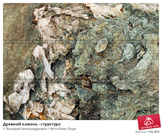 Купить «Древний камень - структура», фото № 160454, снято 19 сентября 2007 г. (c) Валерий Александрович / Фотобанк Лори