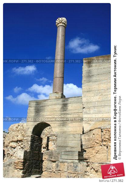 Купить «Древняя колонна в Карфагене. Термии Антония. Тунис», фото № 271382, снято 16 марта 2018 г. (c) Вероника Галкина / Фотобанк Лори