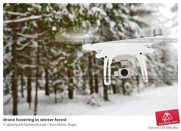 Купить «drone hovering in winter forest», фото № 28664302, снято 11 февраля 2018 г. (c) Дмитрий Калиновский / Фотобанк Лори