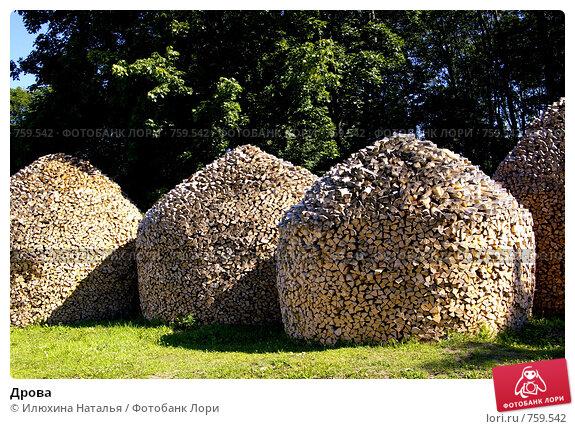 Купить «Дрова», фото № 759542, снято 5 июля 2008 г. (c) Илюхина Наталья / Фотобанк Лори