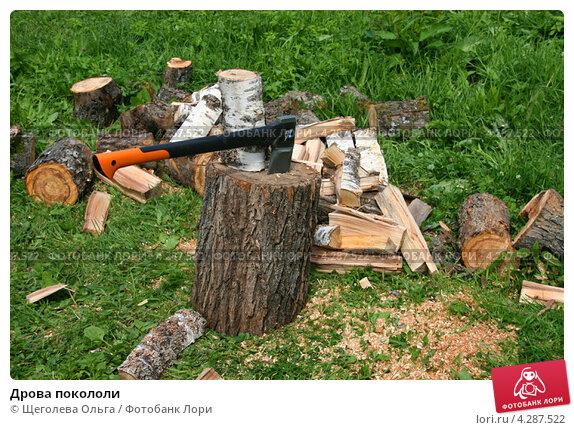 Купить «Дрова покололи», эксклюзивное фото № 4287522, снято 30 июня 2012 г. (c) Щеголева Ольга / Фотобанк Лори