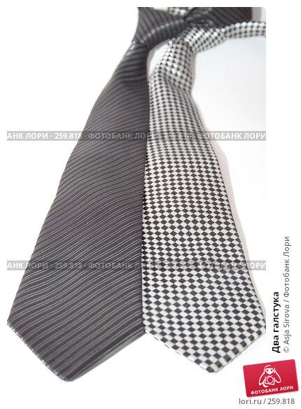 Два галстука, фото № 259818, снято 19 апреля 2008 г. (c) Asja Sirova / Фотобанк Лори