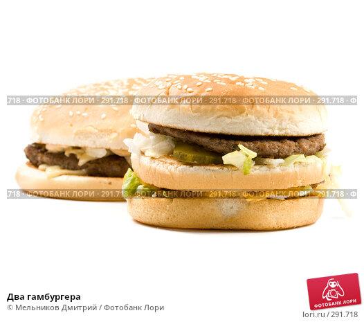 Два гамбургера, фото № 291718, снято 26 апреля 2008 г. (c) Мельников Дмитрий / Фотобанк Лори