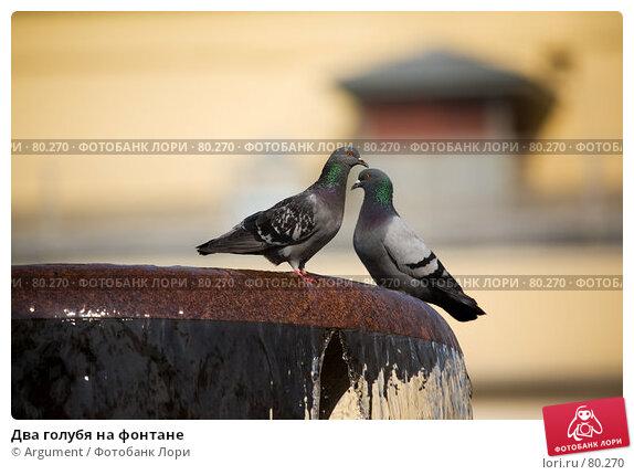 Купить «Два голубя на фонтане», фото № 80270, снято 23 августа 2007 г. (c) Argument / Фотобанк Лори