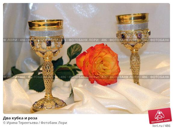 Два кубка и роза, эксклюзивное фото № 486, снято 26 июля 2005 г. (c) Ирина Терентьева / Фотобанк Лори
