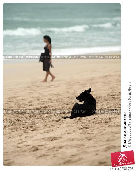 Купить «Два одиночества», фото № 238726, снято 22 февраля 2008 г. (c) Морозова Татьяна / Фотобанк Лори