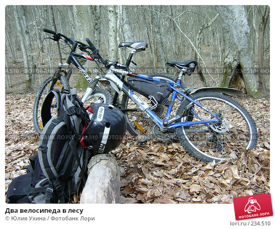 Два велосипеда в лесу, фото № 234510, снято 1 января 2003 г. (c) Юлия Ухина / Фотобанк Лори