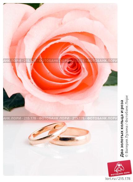Два золотых кольца и роза, фото № 215178, снято 1 марта 2008 г. (c) Валерия Потапова / Фотобанк Лори