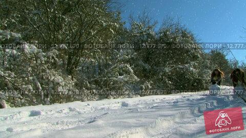 Купить «Две девушки лепят снеговика», видеоролик № 12777670, снято 2 июля 2015 г. (c) Tatiana Kravchenko / Фотобанк Лори