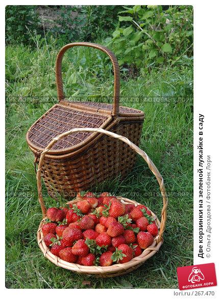 Две корзинки на зеленой лужайке в саду, фото № 267470, снято 8 июля 2005 г. (c) Ольга Дроздова / Фотобанк Лори