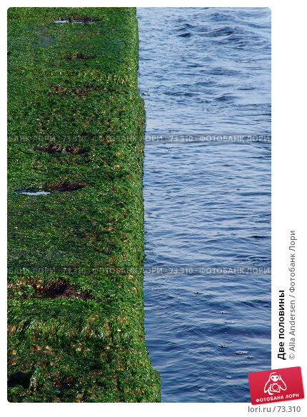 Две половины, фото № 73310, снято 11 ноября 2006 г. (c) Alla Andersen / Фотобанк Лори