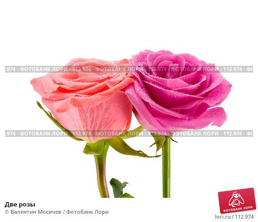 Две розы, фото № 112974, снято 3 марта 2007 г. (c) Валентин Мосичев / Фотобанк Лори