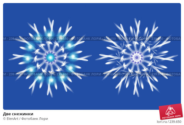Купить «Две снежинки», иллюстрация № 239650 (c) ElenArt / Фотобанк Лори
