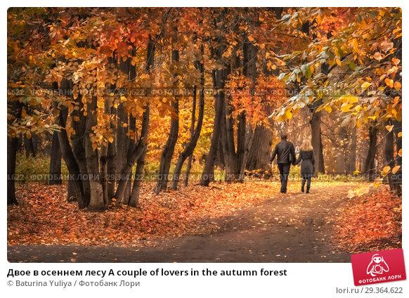 Купить «Двое в осеннем лесу A couple of lovers in the autumn forest», фото № 29364622, снято 15 октября 2011 г. (c) Baturina Yuliya / Фотобанк Лори