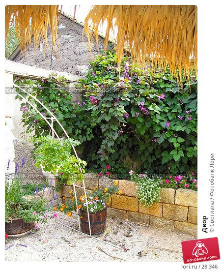 Двор, фото № 28346, снято 25 сентября 2005 г. (c) Светлана / Фотобанк Лори