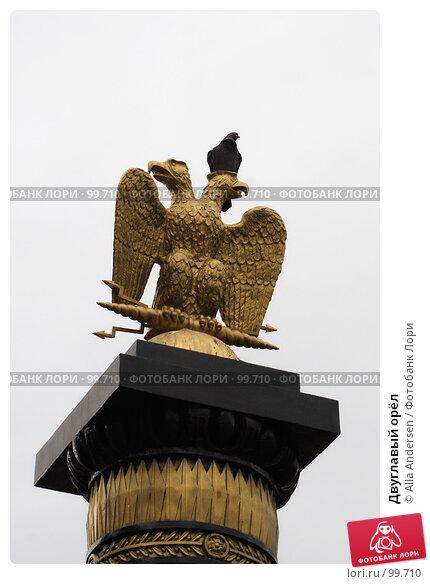 Купить «Двуглавый орёл», фото № 99710, снято 4 октября 2007 г. (c) Alla Andersen / Фотобанк Лори