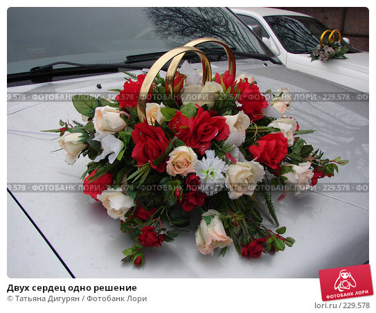 Купить «Двух сердец одно решение», фото № 229578, снято 15 марта 2008 г. (c) Татьяна Дигурян / Фотобанк Лори