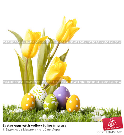Easter eggs with yellow tulips in grass. Стоковое фото, фотограф Евдокимов Максим / Фотобанк Лори