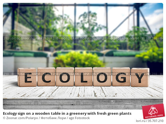 Ecology sign on a wooden table in a greenery with fresh green plants. Стоковое фото, фотограф Zoonar.com/Polarpx / age Fotostock / Фотобанк Лори