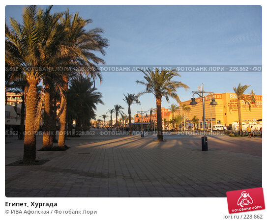 Египет, Хургада, фото № 228862, снято 8 января 2008 г. (c) ИВА Афонская / Фотобанк Лори