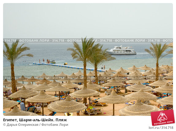 Купить «Египет, Шарм-аль-Шейх. Пляж», фото № 314718, снято 8 апреля 2008 г. (c) Дарья Олеринская / Фотобанк Лори