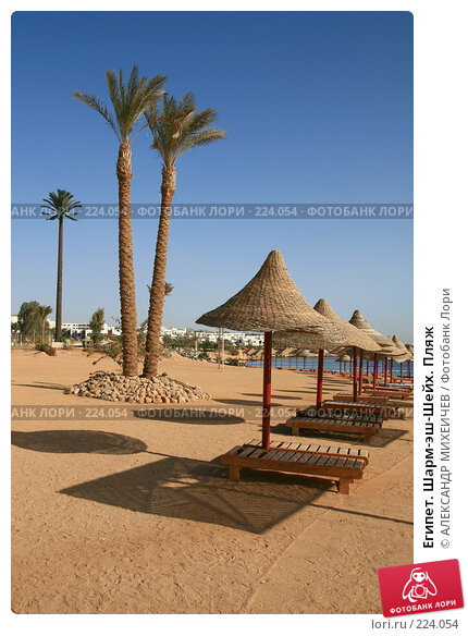 Египет. Шарм-эш-Шейх. Пляж, фото № 224054, снято 18 февраля 2008 г. (c) АЛЕКСАНДР МИХЕИЧЕВ / Фотобанк Лори