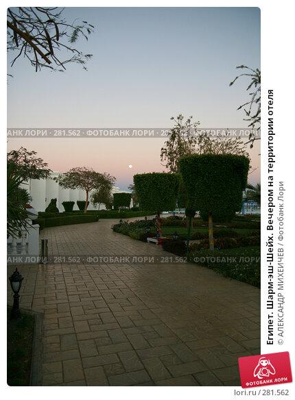 Египет. Шарм-эш-Шейх. Вечером на территории отеля, фото № 281562, снято 20 февраля 2008 г. (c) АЛЕКСАНДР МИХЕИЧЕВ / Фотобанк Лори