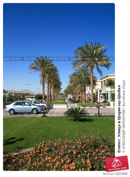 Купить «Египет. Улица в Шарм-эш-Шейхе», фото № 222694, снято 21 февраля 2008 г. (c) АЛЕКСАНДР МИХЕИЧЕВ / Фотобанк Лори
