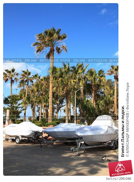 Купить «Египет.Пальмы и лодки.», фото № 290046, снято 26 февраля 2008 г. (c) АЛЕКСАНДР МИХЕИЧЕВ / Фотобанк Лори