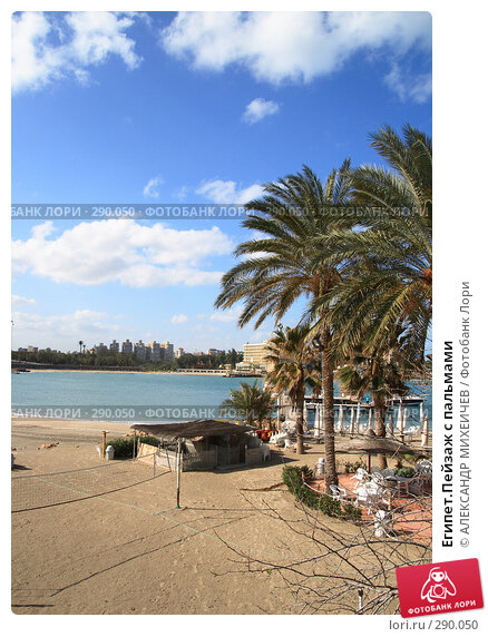 Египет.Пейзаж с пальмами, фото № 290050, снято 26 февраля 2008 г. (c) АЛЕКСАНДР МИХЕИЧЕВ / Фотобанк Лори