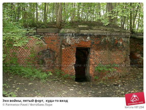 Эхо войны, пятый форт,  куда-то вход, фото № 87234, снято 7 сентября 2007 г. (c) Parmenov Pavel / Фотобанк Лори