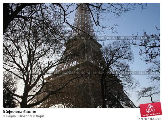 Эйфелева башня, фото № 164630, снято 20 декабря 2007 г. (c) Вадим / Фотобанк Лори