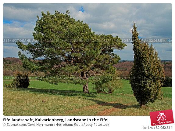 Eifellandschaft, Kalvarienberg, Landscape in the Eifel. Стоковое фото, фотограф Zoonar.com/Gerd Herrmann / easy Fotostock / Фотобанк Лори