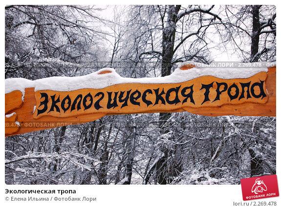 Купить «Экологическая тропа», фото № 2269478, снято 9 января 2011 г. (c) Елена Ильина / Фотобанк Лори