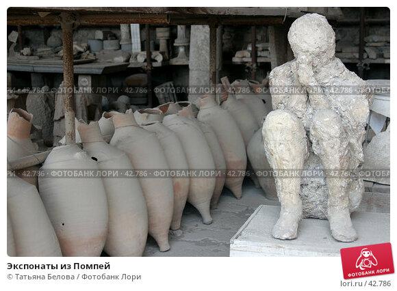Экспонаты из Помпей, фото № 42786, снято 24 мая 2006 г. (c) Татьяна Белова / Фотобанк Лори