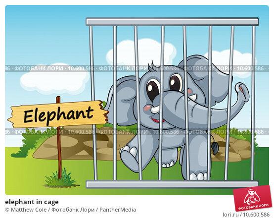 elephant in cage. Стоковая иллюстрация, иллюстратор Matthew Cole / PantherMedia / Фотобанк Лори