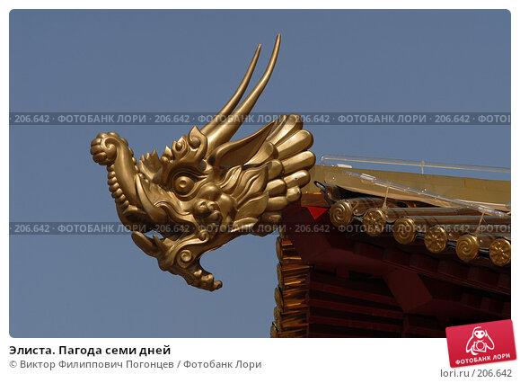 Элиста. Пагода семи дней, фото № 206642, снято 25 мая 2007 г. (c) Виктор Филиппович Погонцев / Фотобанк Лори