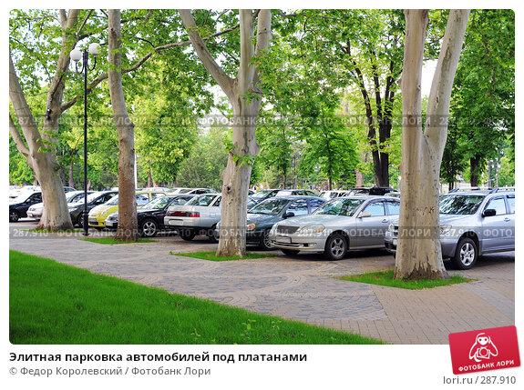 Купить «Элитная парковка автомобилей под платанами», фото № 287910, снято 15 мая 2008 г. (c) Федор Королевский / Фотобанк Лори