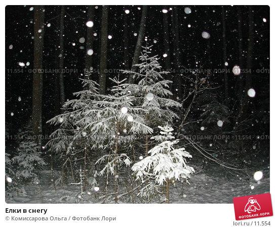 Елки в снегу, фото № 11554, снято 20 ноября 2005 г. (c) Комиссарова Ольга / Фотобанк Лори