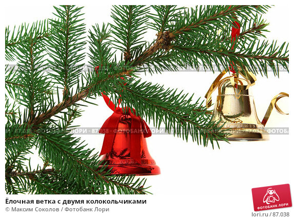 Купить «Ёлочная ветка с двумя колокольчиками», фото № 87038, снято 21 сентября 2007 г. (c) Максим Соколов / Фотобанк Лори