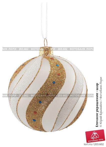 Купить «Елочное украшение - шар», фото № 203602, снято 25 ноября 2007 г. (c) Юрий Брыкайло / Фотобанк Лори