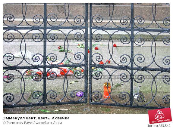 Эммануил Кант, цветы и свечка, фото № 83542, снято 3 сентября 2007 г. (c) Parmenov Pavel / Фотобанк Лори