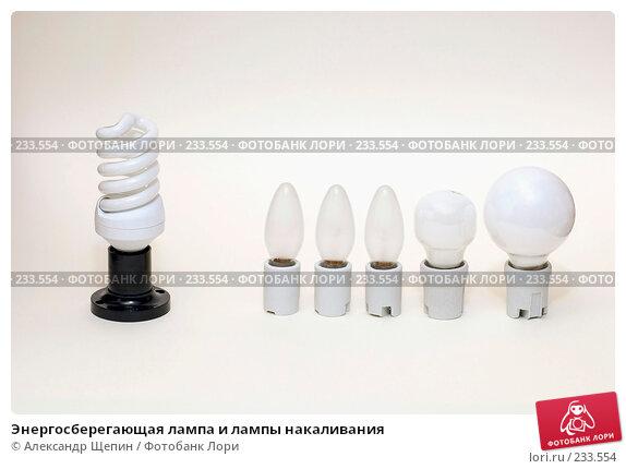 Энергосберегающая лампа и лампы накаливания, эксклюзивное фото № 233554, снято 26 марта 2008 г. (c) Александр Щепин / Фотобанк Лори