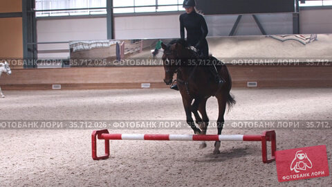 Equestrian - a woman in black clothes rides a dark horse on hippodrome and jumps over the obstacle. Стоковое видео, видеограф Константин Шишкин / Фотобанк Лори