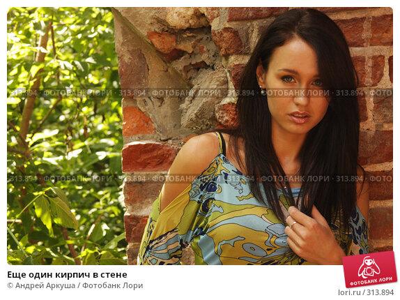 Купить «Еще один кирпич в стене», фото № 313894, снято 5 июня 2008 г. (c) Андрей Аркуша / Фотобанк Лори