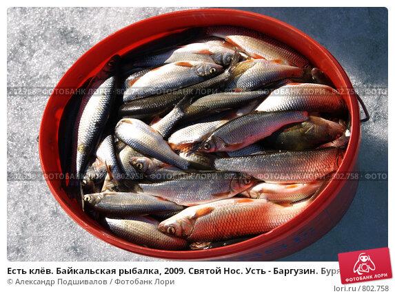 байкал баргузин рыбалка