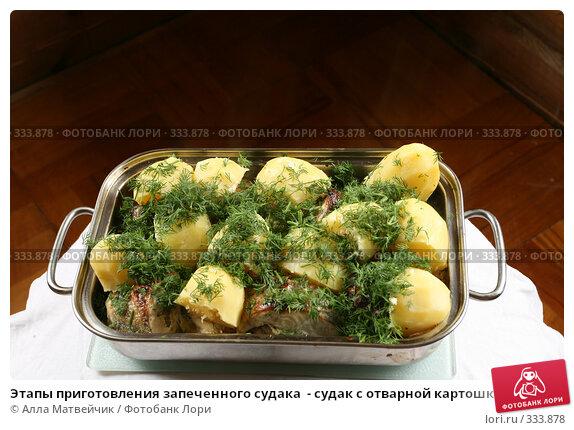 Этапы приготовления запеченного судака  - судак с отварной картошкой и укропом готов к подаче на стол, фото № 333878, снято 15 июня 2008 г. (c) Алла Матвейчик / Фотобанк Лори