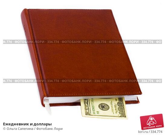 Ежедневник и доллары, фото № 334774, снято 30 мая 2007 г. (c) Ольга Сапегина / Фотобанк Лори