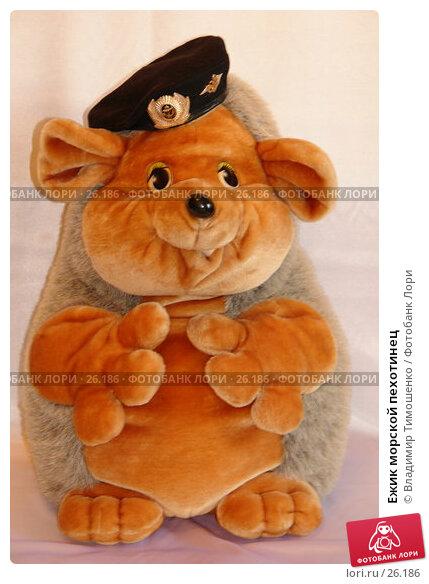 Купить «Ежик морской пехотинец», фото № 26186, снято 23 марта 2007 г. (c) Владимир Тимошенко / Фотобанк Лори